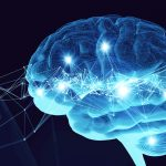 Deep Learning Bootcamp